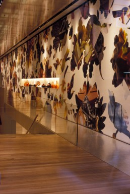 Prada Flagship Store in New York, New York by architects Rem Koolhaas, OMA