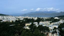 TOWER VIEW Herzog de Meuron de Young seum San Francisco