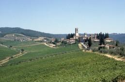 Barberino a Passignano in Florence, Italy