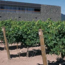 DETAIL Larry Speck Herzog de Meuron Dominus Winery Napa Valley California