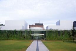Sanaa 21st Century Museum of Modern Contemporary Art Kanazawa Japan with original vines growing on exterior