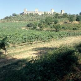 Monteriggio in Monteriggio, Italy
