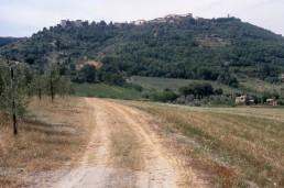 Castelnuovo Dell' Abate in Castelnuovo Dell' Abate, Italy