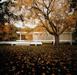 Farnsworth House in Plano, Texas by architect Ludwig Mies van der Rohe