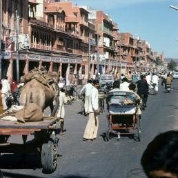 Jaipur in Jaipur, India