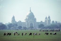 Victoria Memorial Hall in Calcutta, India