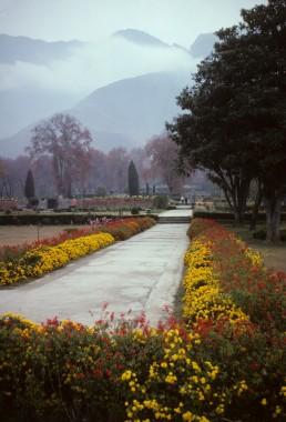 Nishat Bagh in Srinagar, India