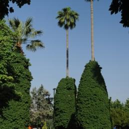 Shiraz Park in Shiraz, Iran