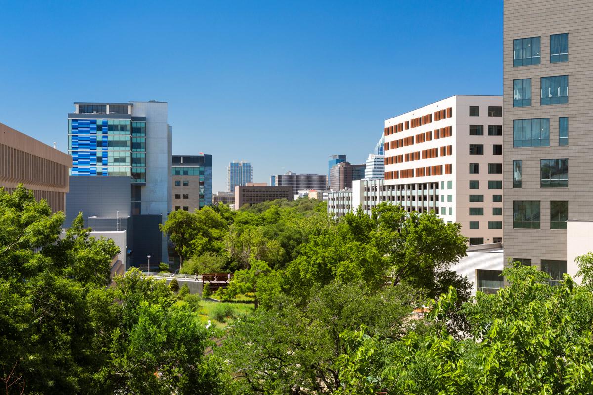 UT Austin Medical District Master Plan - Larry Speck
